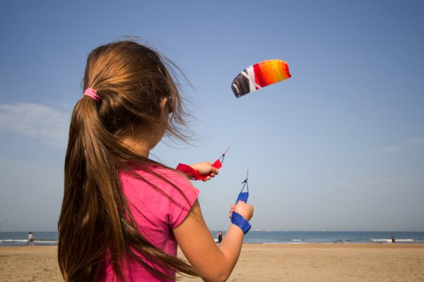 Cross kite air picture 4