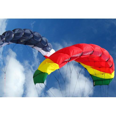 flexifoil sting kite in rasta